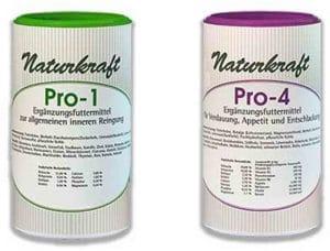 kraeuter-fuer-gesunde-verdauung-darmgesundheit-hunde-katzen