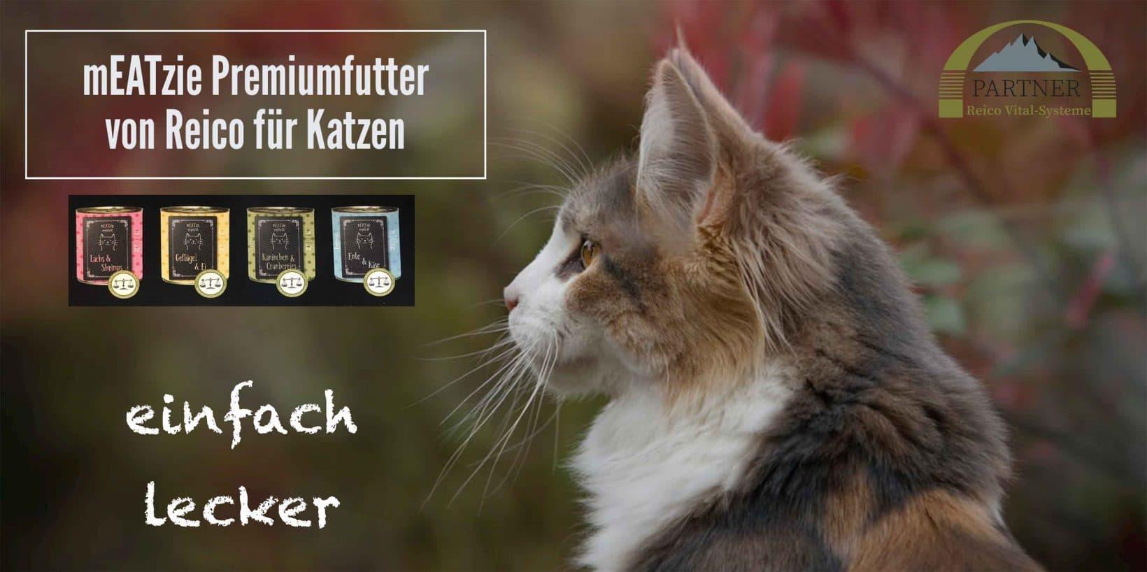 premium-katzenfutter-von-reico-feuchtfutter